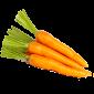 carota-small