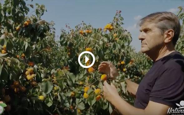 Agricoltore Iader Bassi